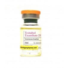 Testabol Enanthate (тестостерон энантат) BD
