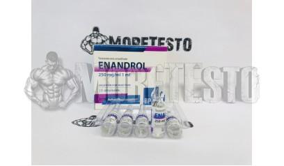 Testosterona E (ENANDROL) от Balkan Pharma
